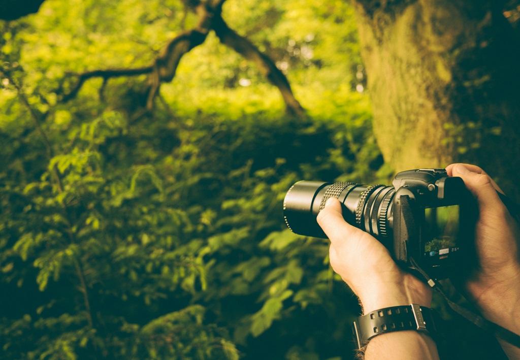Güneş ışığının yatay geldiği sabah ve gün batımına yakın zamanlar fotoğraf için ideal.